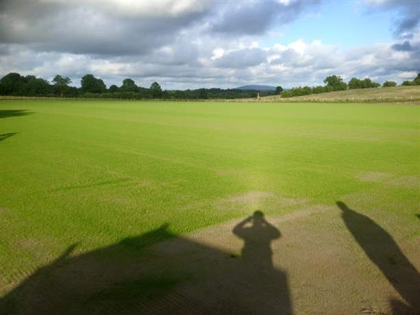 Nace O'Dowd Park Pitch Dev-Grass has sprung